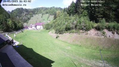 Webcam Cheile Gradistei 5